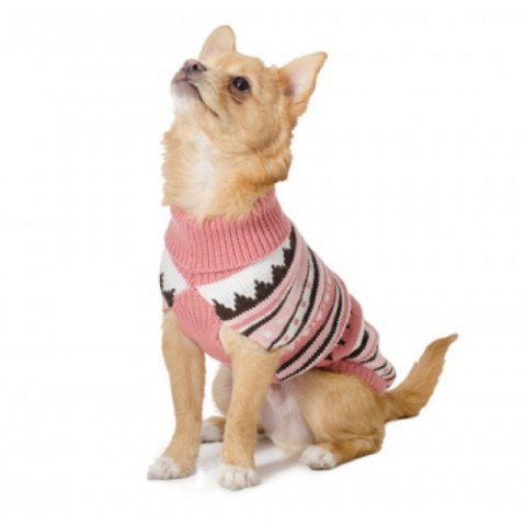Dog Jumper