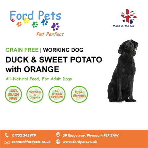 Ford Pets Grain Free Duck & Sweet Potato with Orange Dog Food