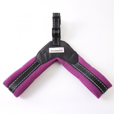 Purple Boomerang Harness Flat